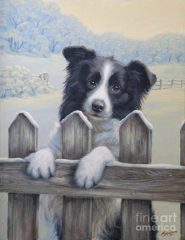 Dog Paintings Art Print featuring the painting Ready For Work by John Silver