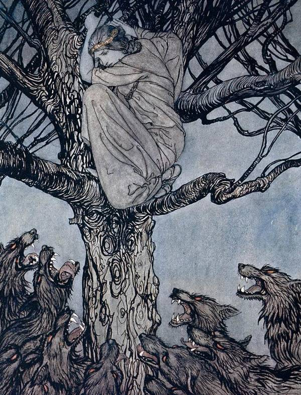 Fairy Story; Fairy Tale; Female; Tree; Wolf; Snarling; Branches; Hiding; Princess; Irish Mythology; Myth; Legend Art Print featuring the drawing She Looked With Angry Woe At The Straining And Snarling Horde Below Illustration From Irish Fairy by Arthur Rackham