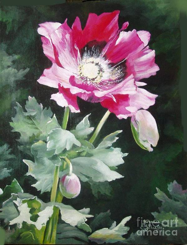 Poppy Art Print featuring the painting Shining Star Poppy by Suzanne Schaefer