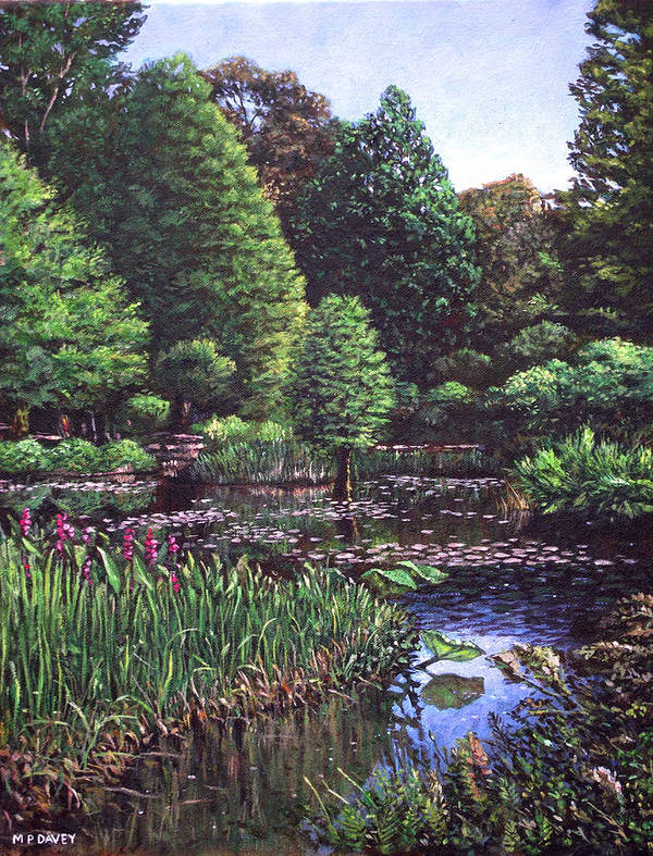 Garden Art Print featuring the painting Southampton Hillier Gardens by Martin Davey