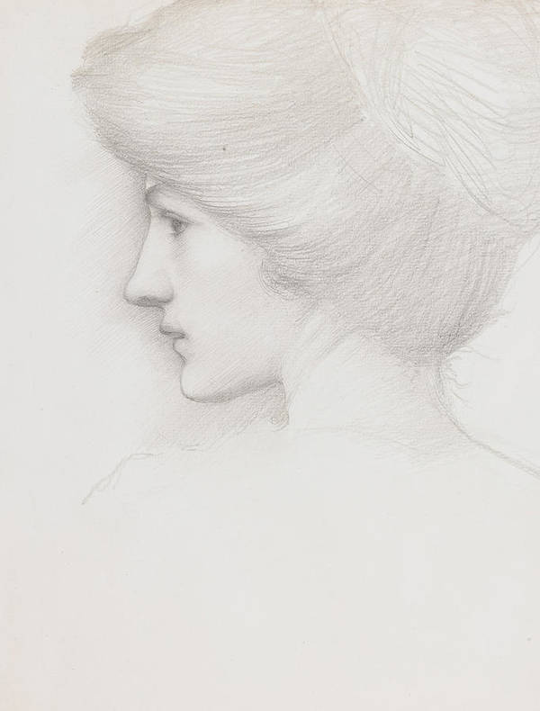 Sir Edward Coley Burne Jones Art Print featuring the drawing Study Of A Woman's Head Profile To Left by Sir Edward Coley Burne-Jones