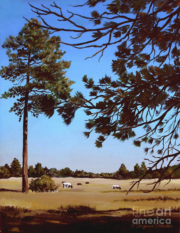 Scene Art Print featuring the painting Summer Serenity by Suzanne Schaefer