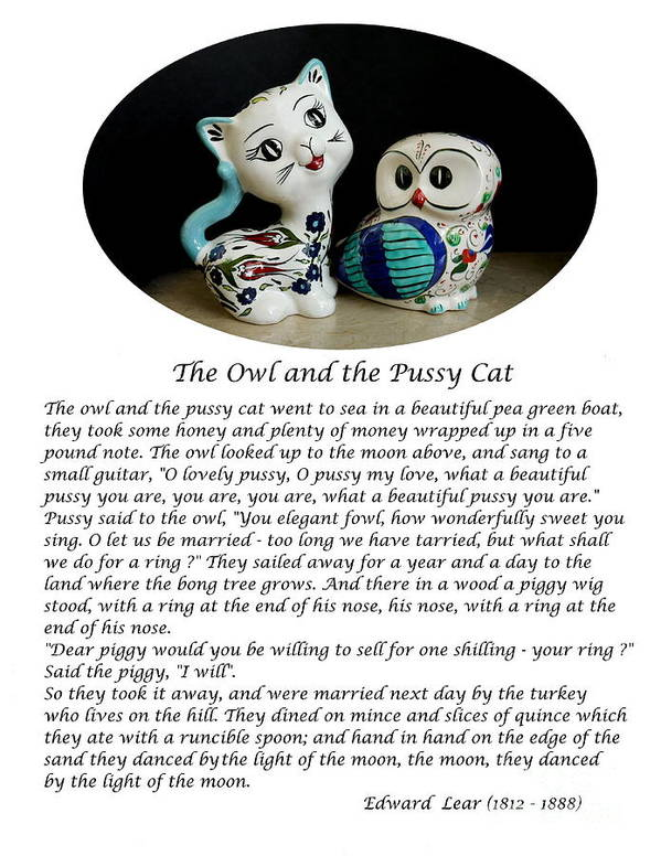 The Owl And The Pussy Cat Art Print featuring the photograph The Owl And The Pussy Cat by John Chatterley