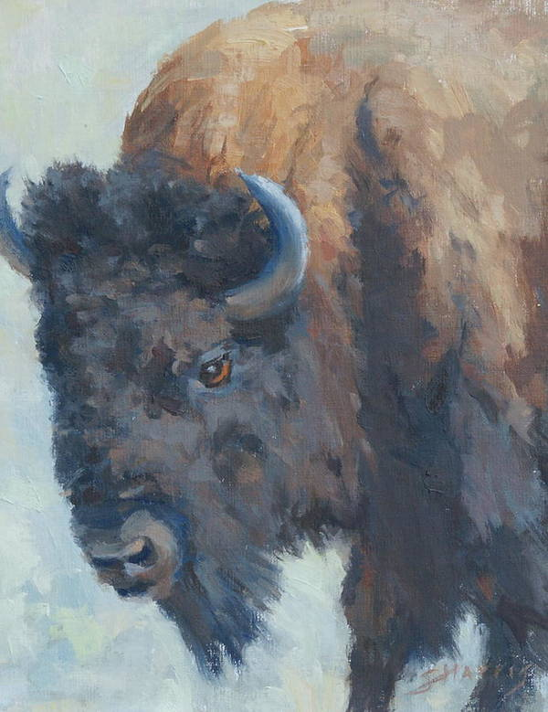 Buffalo Art Print featuring the painting Awesome Strength by Sandra Harris