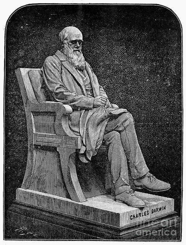 1887 Art Print featuring the photograph Charles Darwin (1809-1882) by Granger