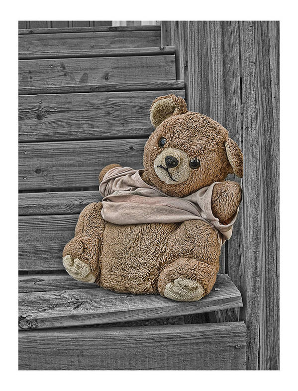 teddy Bear Steps Lost Forgotten stuffed Animal stuffed Bear Artbylink Art Print featuring the photograph Forgotten by Alice Link