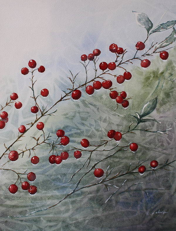 Wintry Art Print featuring the painting Iced Holly by Patsy Sharpe