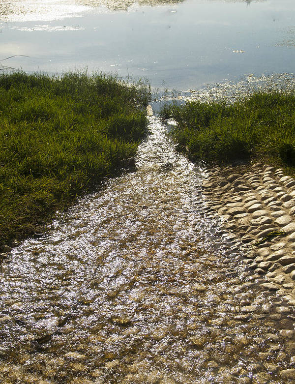 Stream Art Print featuring the photograph Stream And Pebbles by Daniel Blatt