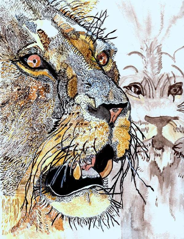 Lion Art Print featuring the painting Always The King by Connie Valasco