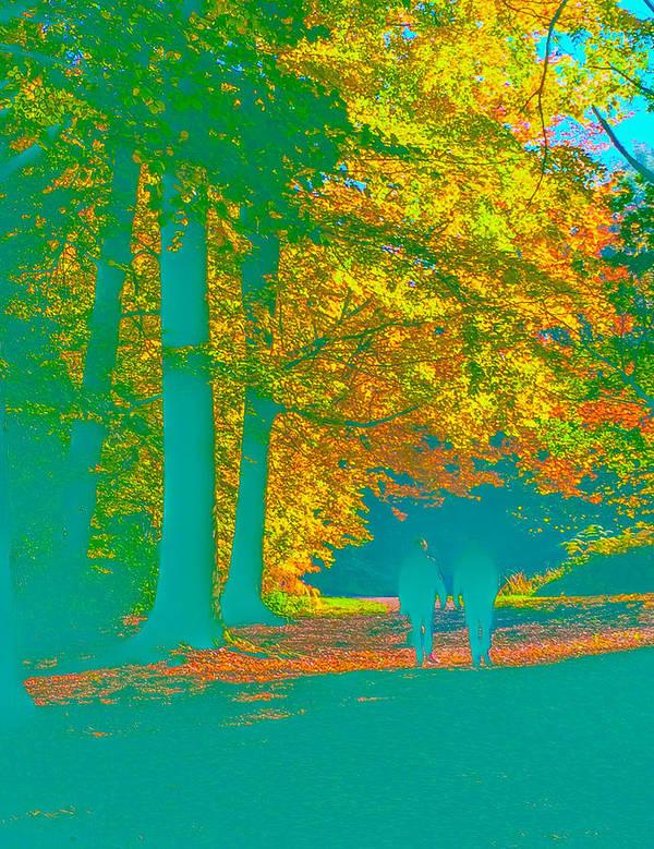 Autumn Art Print featuring the photograph Autumn Woodland Walk Turquoise by Mo Barton