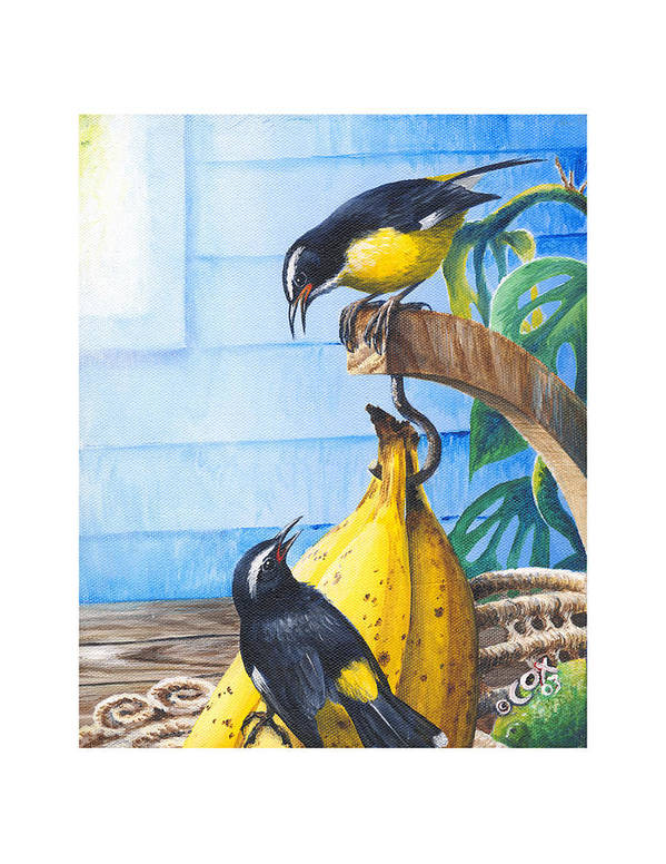 Chris Cox Art Print featuring the painting Bananaquits And Bananas by Christopher Cox