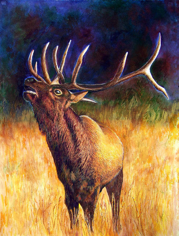 Elk Art Print featuring the painting Call Of The Wild Elk by JoLyn Holladay