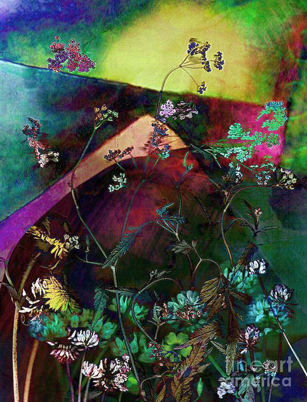 Wild Art Print featuring the mixed media Grassland Series No. 6 by Vinson Krehbiel