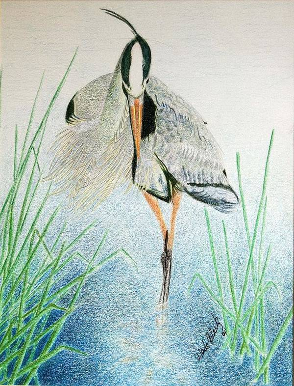 Animals Art Print featuring the painting Great Blue Heron by Wade Clark