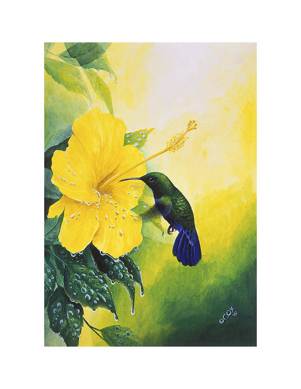 Chris Cox Art Print featuring the painting Green-throated Carib Hummingbird And Yellow Hibiscus by Christopher Cox