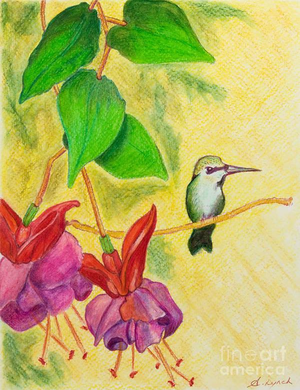 Hummingbird Art Print featuring the painting Hummingbird Amongst The Fuchsia by Alison Lynch