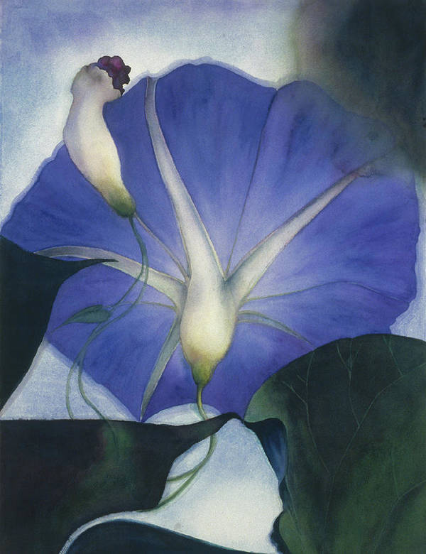 Morning Glory Art Print featuring the painting Into The Blue by Nancy Ethiel