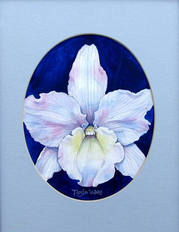 Floral Art Print featuring the painting Lady In White by Tanja Ware