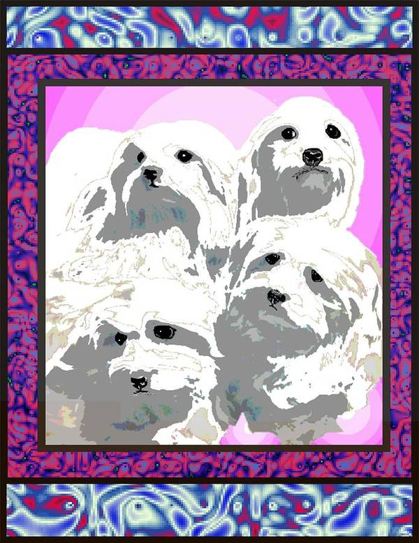 Maltese Group Art Print featuring the digital art Maltese Group by Kathleen Sepulveda