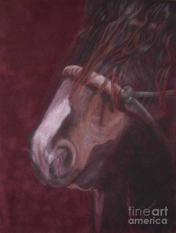 Gypsy Horses Art Print featuring the drawing Pet Me by Gail Finger