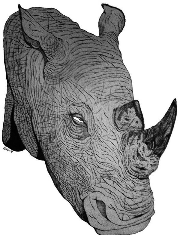 Rhino Animal Endangered Wildlife Nature Art Print featuring the drawing Rhino by Nick Gustafson
