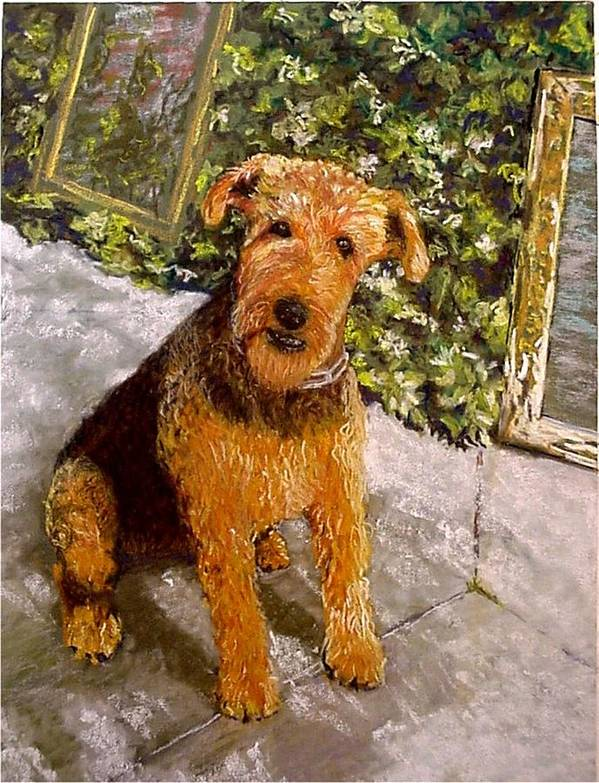 Airedale Art Print featuring the painting Riley by David Horning