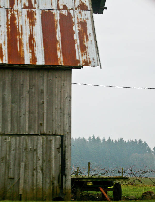Barns Art Print featuring the photograph Rusted Roof by Liz Santie