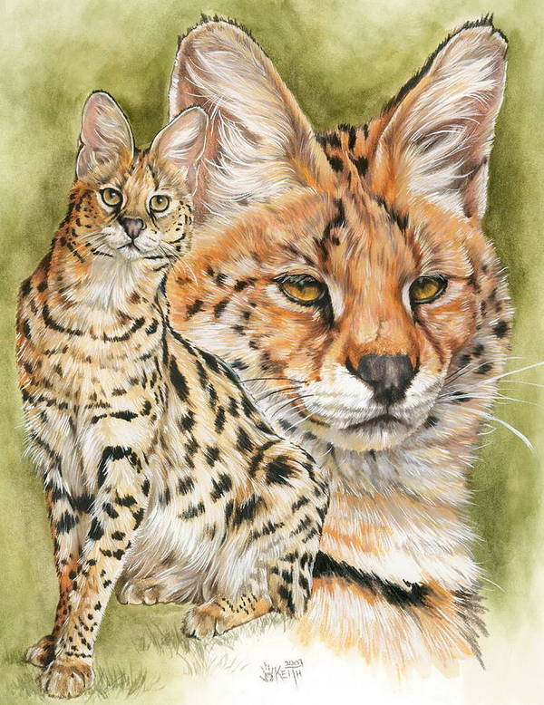 Serval Art Print featuring the mixed media Tempo by Barbara Keith