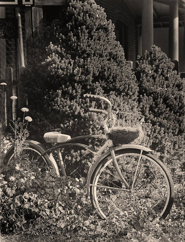 Bike Art Print featuring the photograph The Bicycle Garden II by Jim Furrer