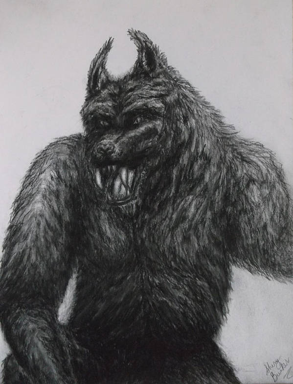 Pencil Drawings Of Werewolf Art Print featuring the drawing Werewolf by Sherry Bunker