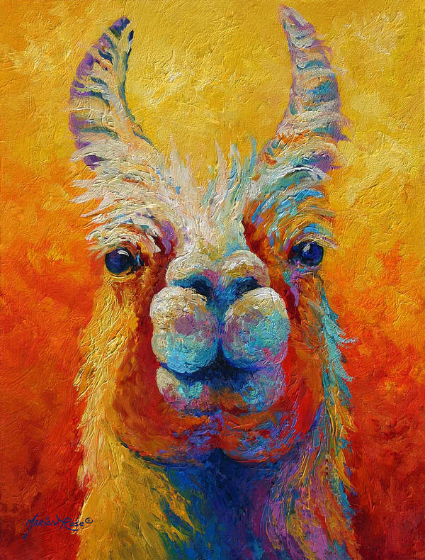 Llama Art Print featuring the painting You Lookin At Me by Marion Rose