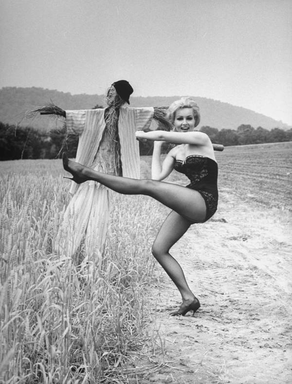Timeincown Art Print featuring the photograph Julie Newmar by Nina Leen