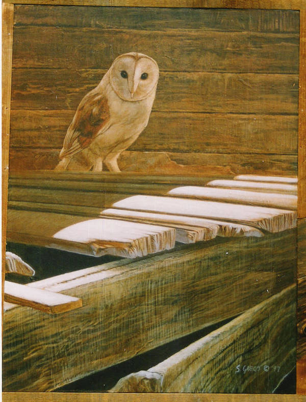Wildlife Art Print featuring the painting Barn Owl by Steve Greco