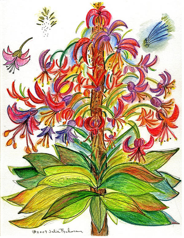Flowers Nature Botany Drawing Julie Richman Flora Pencil Art Print featuring the painting Funny Flowers On Green Plant by Julie Richman