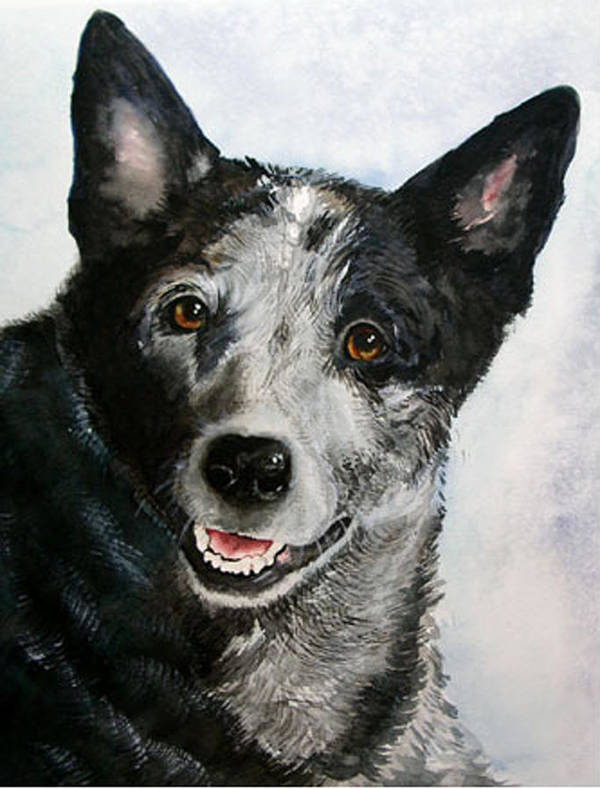 Canine Art Print featuring the painting Kellie by Gina Hall