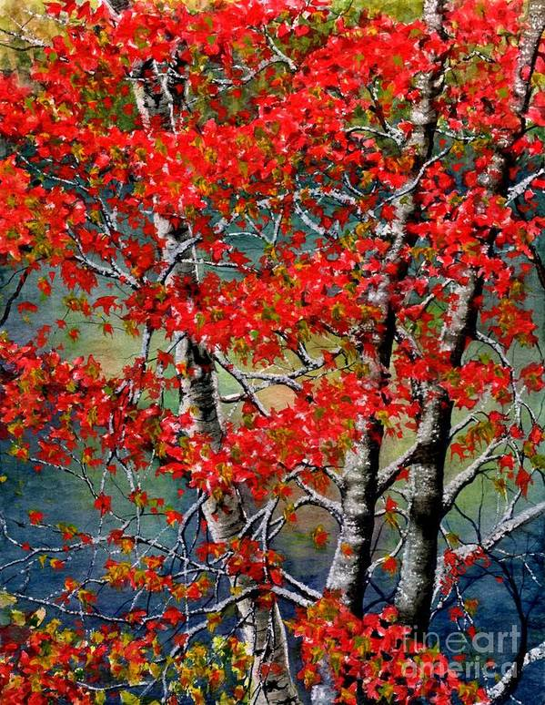 Birch Trees Art Print featuring the painting Autumn Reflections by Janine Riley