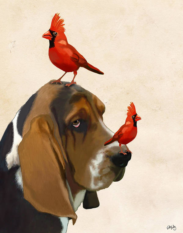 Dog Framed Prints Art Print featuring the digital art Basset Hound And Red Birds by Kelly McLaughlan