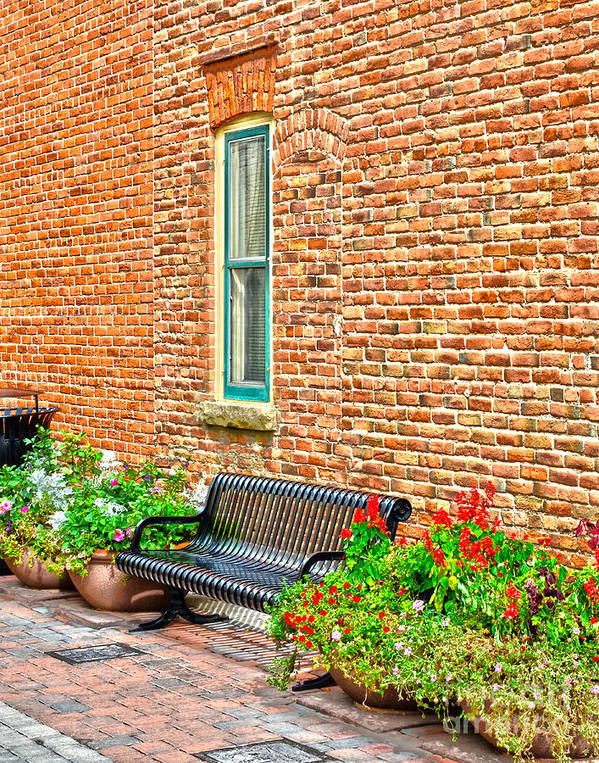 Fort Collins Art Print featuring the photograph Black Bench by Keith Ducker