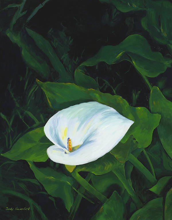 Calla Lily Art Print featuring the painting Calla Lily In The Garden Of Diego And Frida by Judy Swerlick