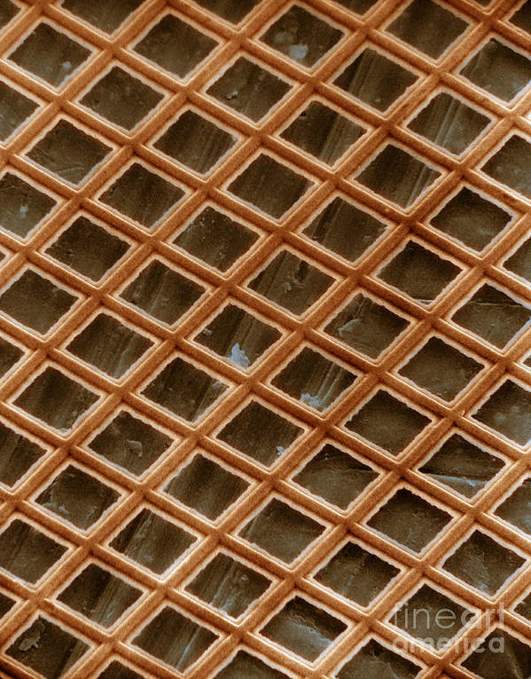 Scanning Electron Micrograph Art Print featuring the photograph Copper Electron Micrograph Grid by David M. Phillips