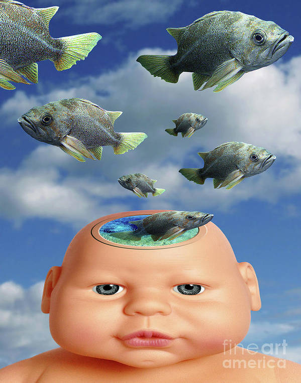 Baby Art Print featuring the digital art Flying Head Fish by Keith Dillon