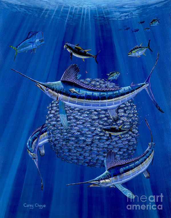 White Marlin Art Print featuring the painting Having A Ball Off0078 by Carey Chen