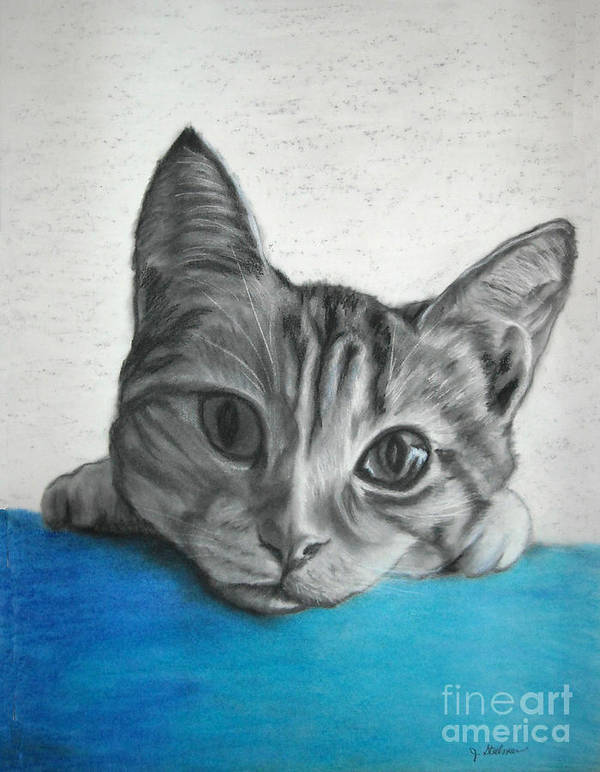 Charcoal Art Print featuring the painting Kahlua Kitty by Jane Steelman