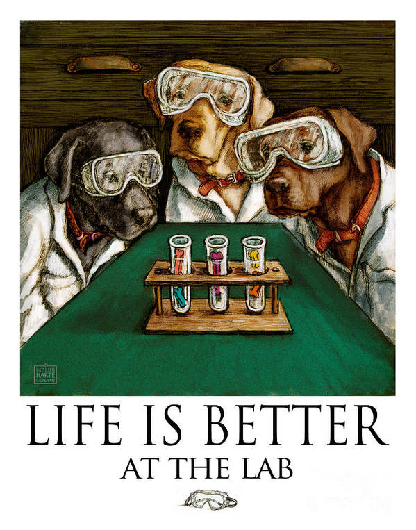 Labrador Retrievers Art Print featuring the mixed media Life Is Bette At The Lab - Labrador Retrievers by Kathleen Harte Gilsenan