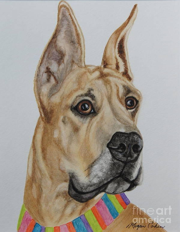 Great Dane Art Print featuring the painting Memphis The Great Dane by Megan Cohen