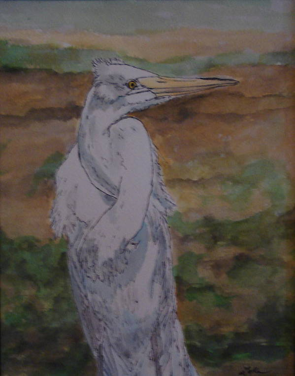 Bird Art Print featuring the painting Great White Egret by Cheryl Lynn Looker