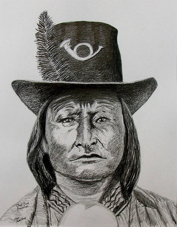 Portrait Art Print featuring the drawing Chief Bird Arapahoe by Stan Hamilton