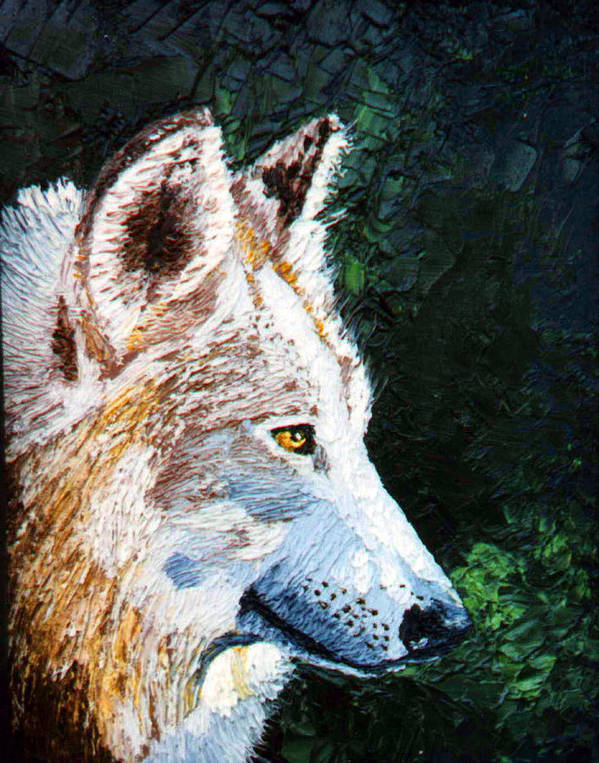 Timber Wolf Art Print featuring the painting Timberwolf by Stan Hamilton