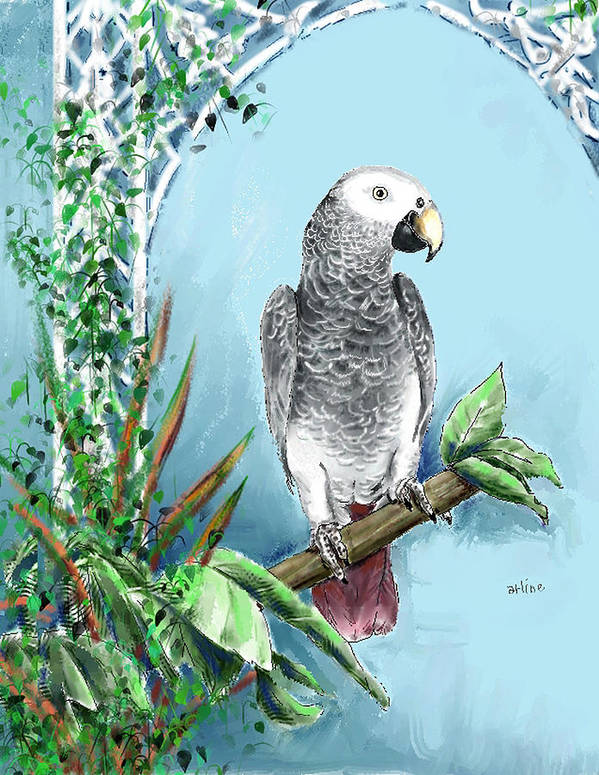 Birds Art Print featuring the digital art African Grey Parrot by Arline Wagner