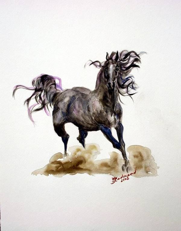 Black Horse Art Print featuring the painting Black Horse by BJ Redmond